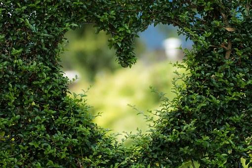 El amor en la vida cotidiana